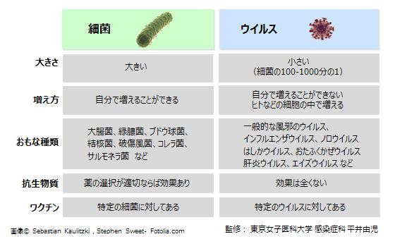 違い 細菌 ウイルス