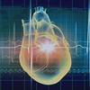 集中連載・移植医療 ~臓器提供の実際はどうなっているか~ 第3回「なぜ日本の患者はアメリカを目指すのか~世界の臓器移植事情と国内の法整備~」