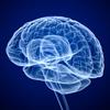 集中連載・移植医療 ~臓器提供の実際はどうなっているか~ 第4回 どのようにして、私たちは臓器を提供するのか(1)脳死下臓器提供