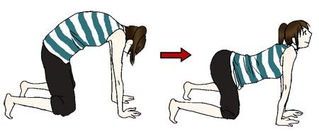 図解「背骨と骨盤を動かして腰を丈夫にしよう! その1」