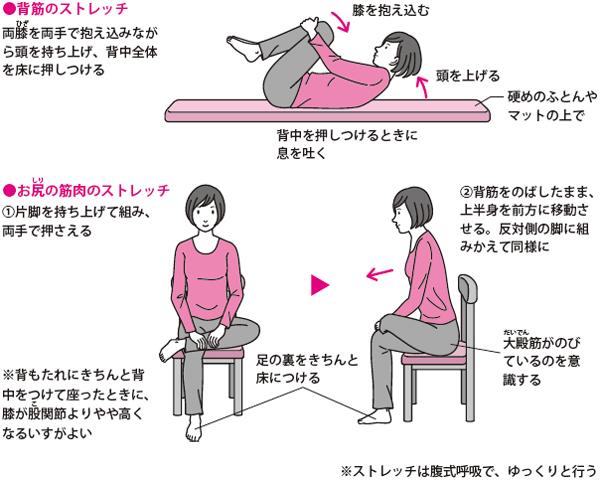 運動療法・ストレッチ1 【腰椎椎間板ヘルニア】薬物療法の進め方(痛みは?副作用は?)|Qlife