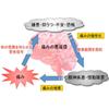 news_051201_100